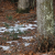 春寒の候の意味とは?時期や使い方を例文でわかりやすく解説!