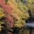 秋霜の候の時期と意味は?読み方と使い方を例文でご紹介!